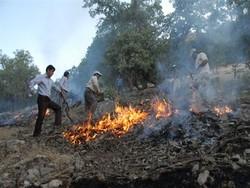 آتشسوزی جنگل2