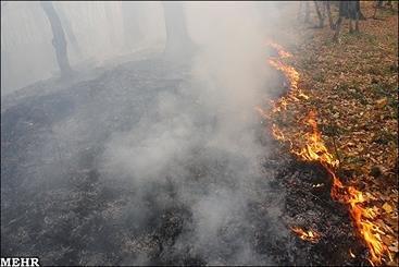آتشسوزی جنگل 3