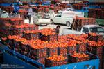 سهم ناچیز آذربایجان شرقی از سبد صادرات محصولات تبدیلی کشاورزی در روزهای کرونایی
