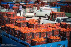 شرق استان سمنان غنی از تولید، فقیر از صادرات/ بررسی موانع صادرات