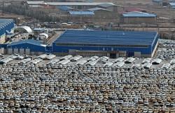 گرانفروشی ۴ خودروساز به تعزیرات حکومتی گزارش شد/ ۸۰ هزار خودروی ناقص در انبار خودروسازان