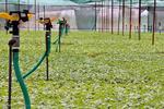 توصیههای ۵ روزه هواشناسی برای کشاورزان