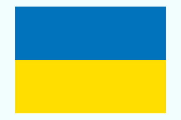 کییف: ۵ کشور پیرامون هواپیمای اوکراینی نشست برگزار میکنند