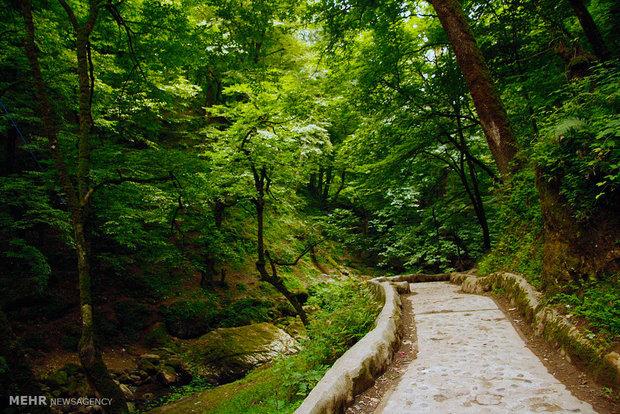 قلعه رودخان در ارتفاعات فومن