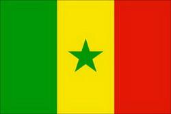 سینیگال کے صدرکی وہابی دہشت گردانہ  فکر پر شدید تنقید