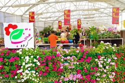 هشتمین نمایشگاه فصلی گل و گیاه تهران برگزار میشود