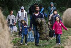 migrants03.jpg