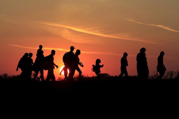 migrants02.jpg