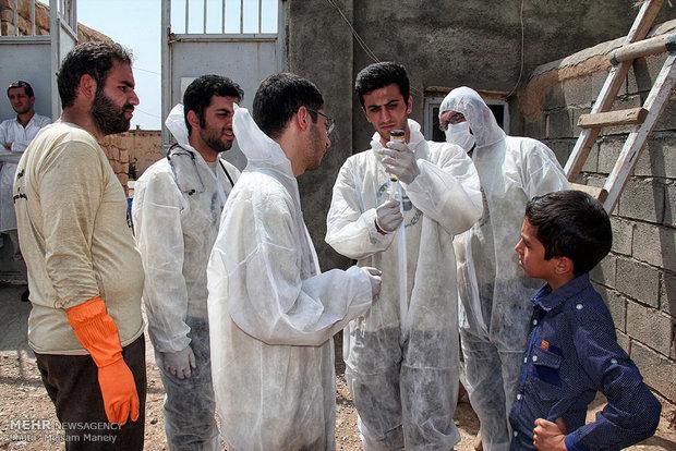 یک میلیون و ۳۹۰ هزار راس دام در استان سمنان واکسینه شدند