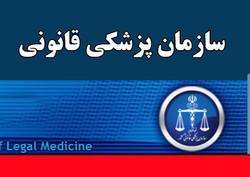 تاکید بر تامین نیروی انسانی برای سازمان پزشکی قانون در برنامه ششم