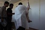 نظارت دامپزشکی زنجان با ۲۵ گروه بر ذبح شرعی و بهداشتی قربانی