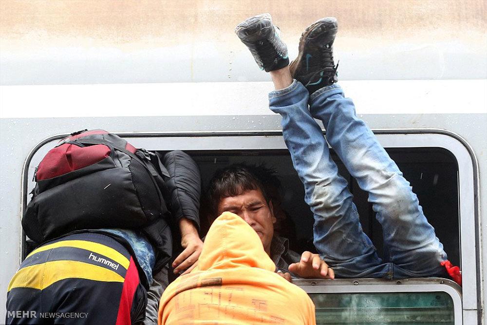 بازگشایی مرز مجارستان به روی مهاجران