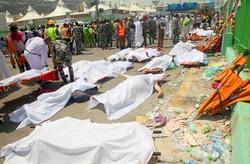 Media, academic people write to intl. figures on Mina tragedy