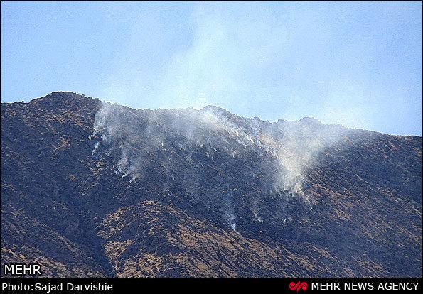 ۶۱ فقره حریق در اراضی منابع طبیعی استان قزوین رخ داده است