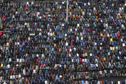 نذورات ۱۰ میلیارد ریالی مازنی ها در عید قربان
