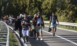 Over 165K migrants arrive in EU in 2016