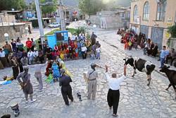 ۲۶ نمایش در نخستین روز از جشنواره تئاترخیابانی مریوان اجراشد
