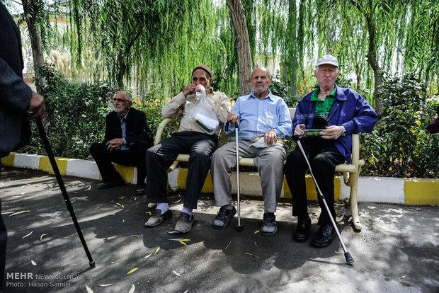 جشن روز سالمند در آسایشگاه کهریزک