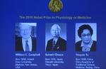برندگان جایزه نوبل پزشکی اعلام شدند