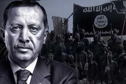 بررسی امکان پیوند تئوریک ترکیه و داعش/ رویای احیای خلافت