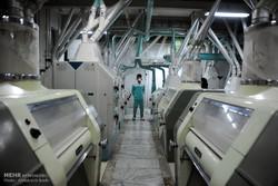 اولین محموله آرد از مازندران به عراق صادر شد