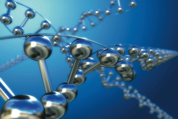 ZnSn nanoparticles synthesized for optical purposes