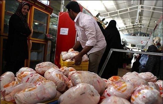 تحولات بازار مرغ و ماهی/ قیمت مرغ کاهش یافت