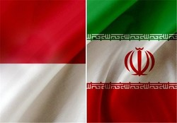 Iran, Indonesia ministers of energy discuss cooperation