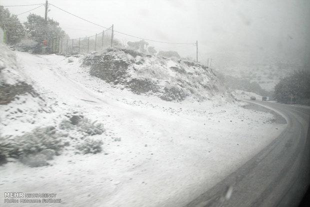 امریکہ اور چین میں شدید برف باری سے نظام زندگی مفلوج