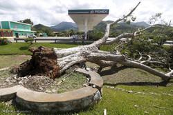 میکسیکو میں طوفان پیٹریشیا سے تفریحی مقامات بھی متاثر