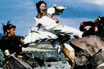 سینمای تایوان در یک سکانس/ ببری که خیز برداشت