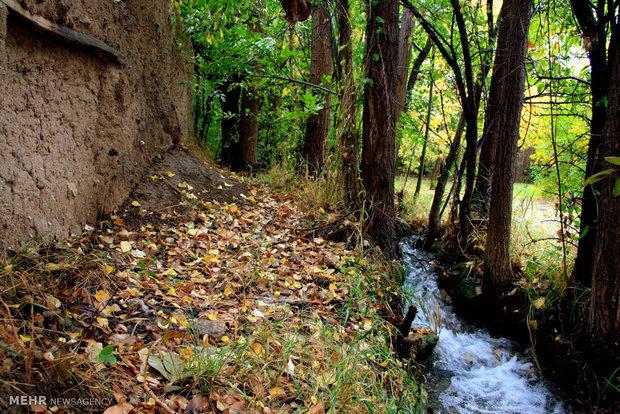 طبیعت پاییزی در دانسفهان