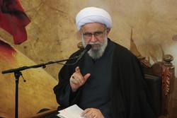 Hamburg cleric slams Saudi's decree against Sheikh Nimr