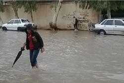 ۵۹ میلیمتر بارندگی برای خورموج ثبت شد/ خسارت به راهها و ابنیه