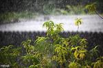 بارش های زمستانی مرهم دل کویر نشد/روزهای سرد در راه است