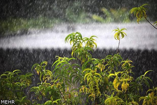 بارندگی