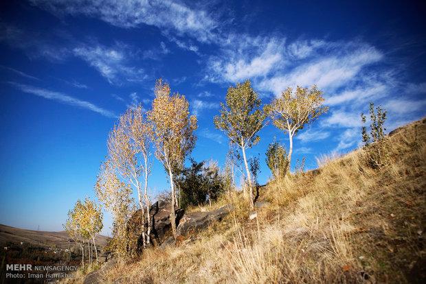 طبیعت پائیزی