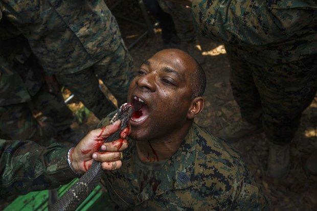 سخت ترین تمرینات نظامی