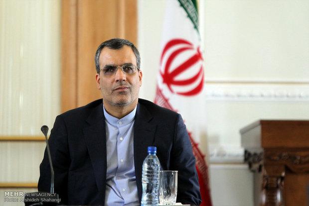 جابری انصاری، سخنگوی وزارت امور خارجه