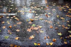 پنجشنبه آخر سال استان کرمانشاه بارانی میشود