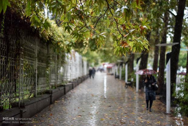 بارش باران و آبگرفتگی معابر در شیراز