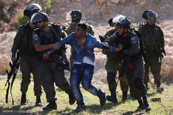 Zionist forces detain host of Palestinians in West Bank