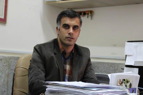 آرمان نصراللهی