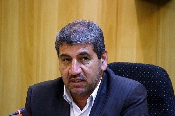 ۳۴۶ تشکل عضو صندوق تسهیلات کشاورزی در استان کرمان هستند