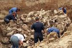 کشف گور دسته جمعی در دیر الزور سوریه