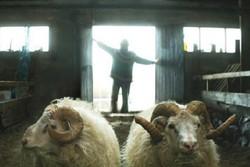 «قوچ ها» پیروز جشنواره فیلم تسالونیکی