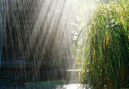 گزارش جدید از وضعیت بارشها/ حجم باران در غرب ۷ برابر شد