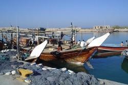 مانور پدافند غیرعامل و مدیریت بحران در جنوب استان بوشهر برگزار شد