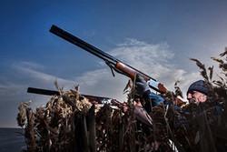 تروریسم محیطزیستی در میانکاله/جنایت ادعایی در توان شکارچیان نیست
