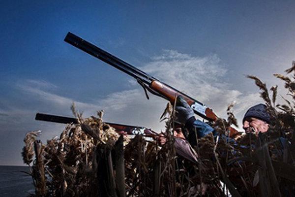 ابراز تاسف از  آمار ۹۰درصدی قتل عام پرندگان مهاجر درتالابهای کشور